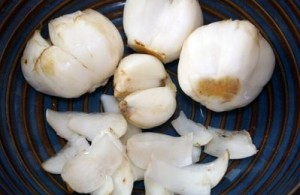 bulb crin-crop