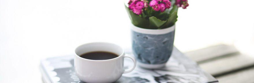 revista ingrijirea florilor