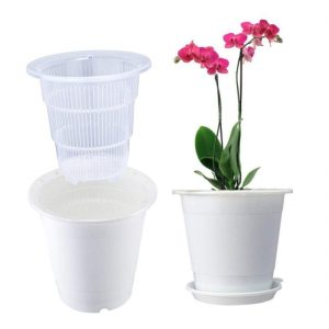 ghiveci pentru orhidee