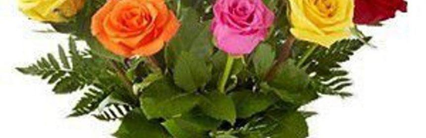 trandafirii in vaza
