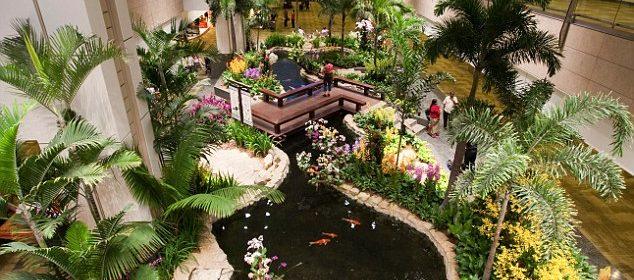 gradini tropicale
